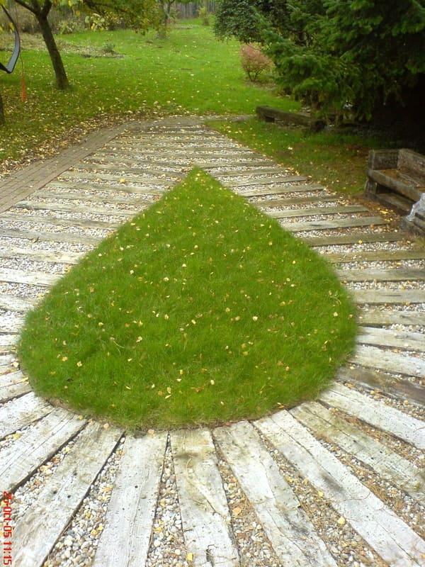 Jardinier au Luxembourg construction abri de jardin bois 1