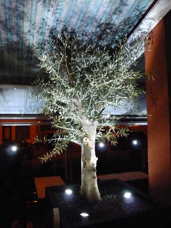 Jardinier paysagiste Luxembourg illumination jardin 25