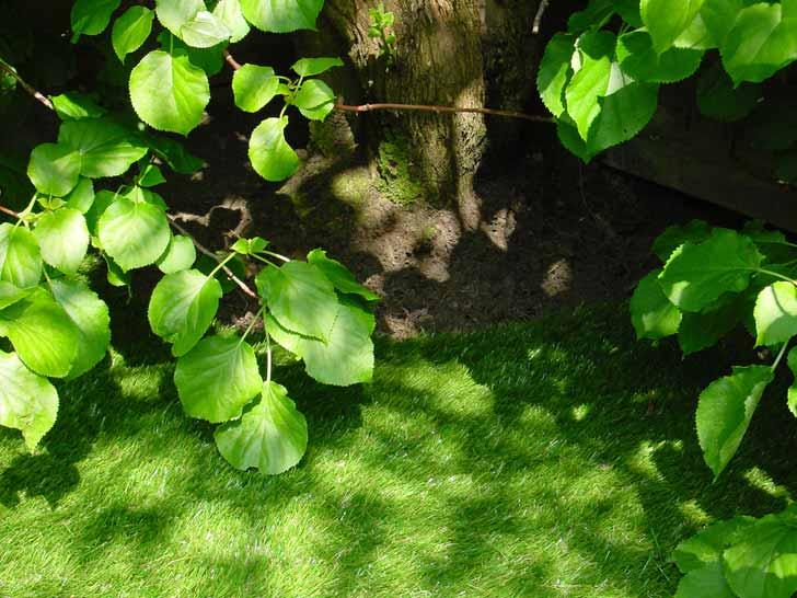Gazon synthétique jardin au Luxembourg