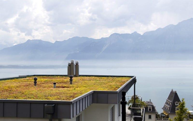 Aménagement extérieur Luxembourg toiture végétale 10