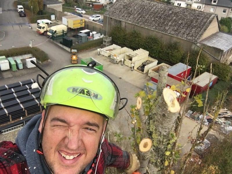Élagage arbres au Luxembourg