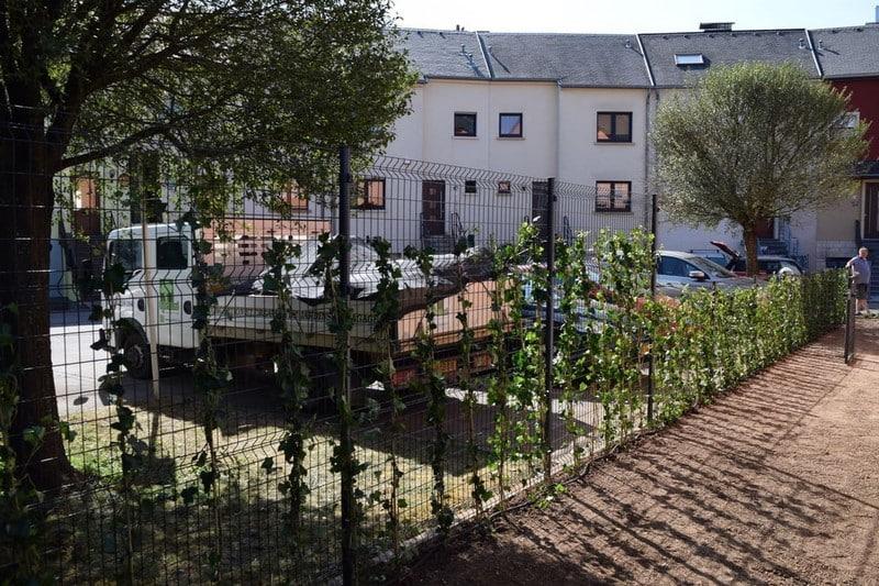 Paysagiste aménagement extérieur jardin Luxembourg 19