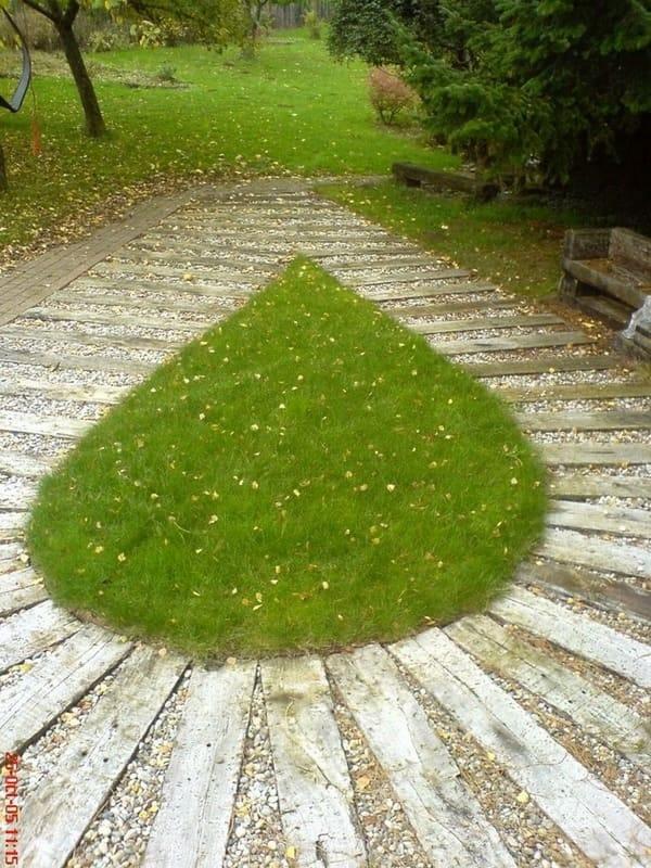 Paysagiste aménagement extérieur jardin Luxembourg 7