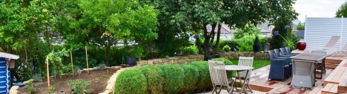 Elagage d'arbustes